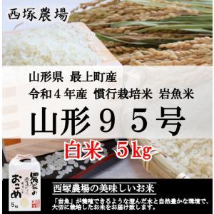 【新米】 慣行栽培米 山形95号 岩魚米 (平成30年産)白米 5kg|nishiduka-farm