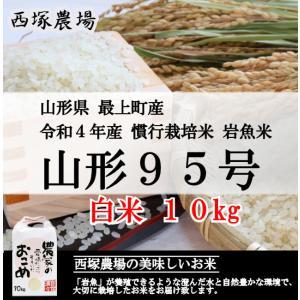 慣行栽培米 山形95号 岩魚米 (平成30年産)白米 10kg|nishiduka-farm
