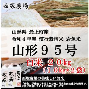 慣行栽培米 山形95号 岩魚米(平成30年産)白米 20kg|nishiduka-farm