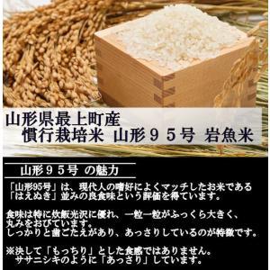 慣行栽培米 山形95号 岩魚米 (令和元年産)白米 20kg nishiduka-farm 03