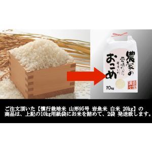 慣行栽培米 山形95号 岩魚米 (令和元年産)白米 20kg nishiduka-farm 08