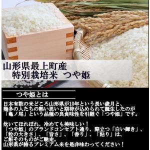 特別栽培米つや姫 (令和元年産)玄米 20kg|nishiduka-farm|04