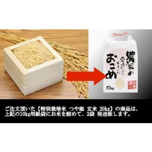 特別栽培米つや姫 (令和元年産)玄米 20kg|nishiduka-farm|09