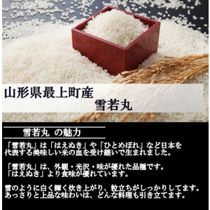 特別栽培米 雪若丸 (平成30年産)白米 10kg nishiduka-farm 03