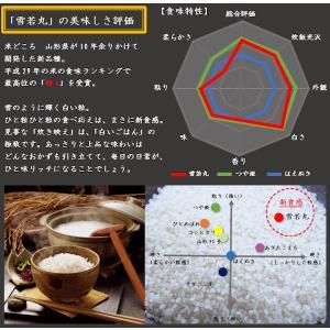 【新米】 特別栽培米 雪若丸 (平成30年産)白米 20kg|nishiduka-farm|02