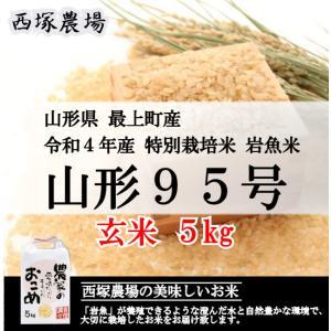 特別栽培米 山形95号 岩魚米 (令和元年産)玄米 5kg
