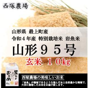 【新米】特別栽培米 山形95号 岩魚米 (令和3年産)玄米 10kg nishiduka-farm