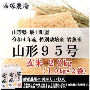 特別栽培米 山形95号 岩魚米 (令和元年産)玄米 20kg