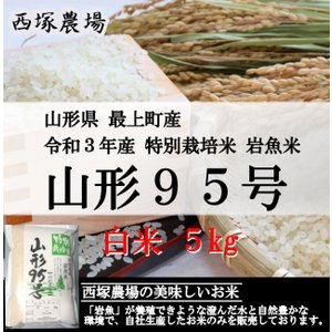 【新米】 特別栽培米 山形95号 岩魚米 (平成30年産)白米 5kg|nishiduka-farm