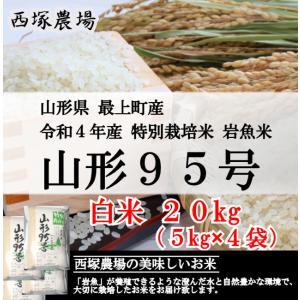 【新米】特別栽培米 山形95号 岩魚米 (令和3年産)白米 20kg nishiduka-farm