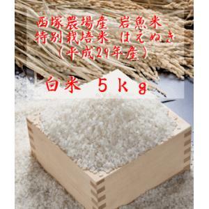 【新米】特別栽培米はえぬき岩魚米 (平成29年産)白米 5kg|nishidukafarm