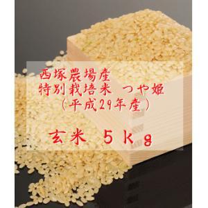 特別栽培米つや姫 (平成29年産)玄米 5kg|nishidukafarm