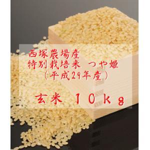 【新米】特別栽培米つや姫 (平成29年産)玄米 10kg|nishidukafarm