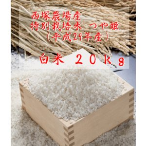 【新米】特別栽培米つや姫 (平成29年産)白米 20kg nishidukafarm