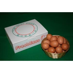 とれたて新鮮平飼い自然卵20個入り|nishii-organic
