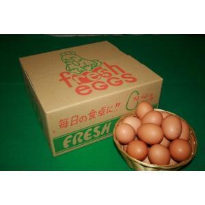 とれたて新鮮平飼い有精卵50個入り|nishii-organic