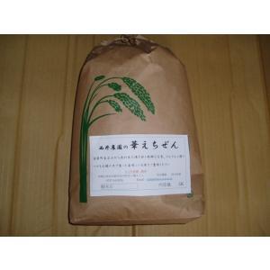 減農薬米 華越前 10K|nishii-organic