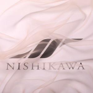 生地 ウエディング、ドレス 超極薄 新感覚エンジェルオーガンジー 色番号B ベージュ|nishikawa-tex1211