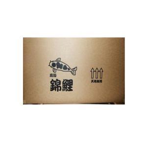 錦鯉用ダンボール箱 特大 80cm 800×260W×320H 10枚 【送料無料 但、一部地域除】|nishikigoiootani