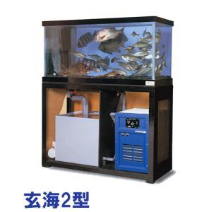 日東機材 活魚畜養水槽 玄海2型 水槽フルセット 【個人宅配送不可 代引不可 送料別途見積】|nishikigoiootani
