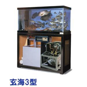 日東機材 活魚畜養水槽 玄海3型 水槽フルセット 【個人宅配送不可 代引不可 送料別途見積】|nishikigoiootani
