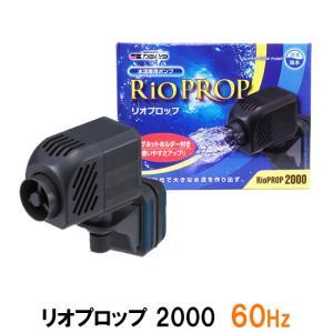 カミハタ リオプロップ 2000 60Hz(西日本用) 水流専用ポンプ 淡水・海水用