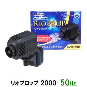 カミハタ リオプロップ 2000 50Hz(東日本用) 水流専用ポンプ 淡水・海水用