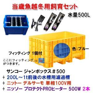 当歳魚越冬用飼育セット 水量500L 【大型商品 送料別途見積】|nishikigoiootani