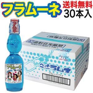 ジュース ご当地サイダー フラムーネ ブルーハワイ味 230ml×30本入 ジュース 箱買い ギフト お盆 お供え 贈り物 nishino-ya