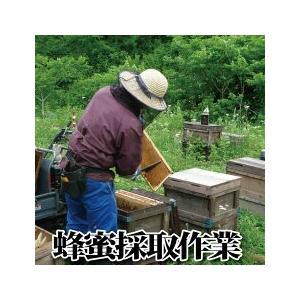 蜂蜜酒 美禄の森 520ml ふくしまプライド。体感キャンペーン(その他)|nishino-ya|04