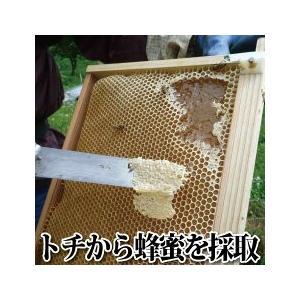 蜂蜜酒 美禄の森 520ml ふくしまプライド。体感キャンペーン (お酒/飲料)|nishino-ya|05