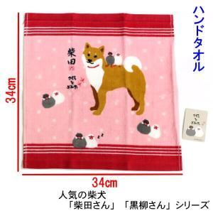 可愛いハンドタオル  柴犬しばたさん 文鳥のさくらとぶんた  正方形34cm タオルハンカチ お手拭...