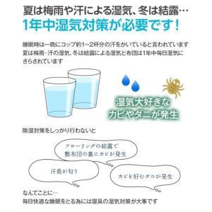 洗える多機能除湿シート 除湿・防ダニ・防カビ・消臭 年中  シングル ニッセン|nissenzai|03