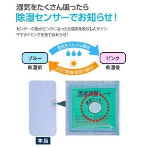 洗える多機能除湿シート 除湿・防ダニ・防カビ・消臭 年中  シングル ニッセン|nissenzai|06
