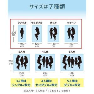 接触冷感× 吸汗速乾 タオル 地リバーシブル敷 パッド 年中  シングル ニッセン|nissenzai|16