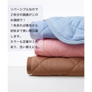 接触冷感× 吸汗速乾 タオル 地リバーシブル敷 パッド 年中  シングル ニッセン|nissenzai|07