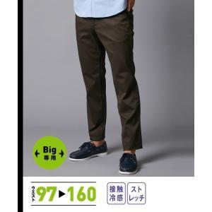 ベージュ系/ ニッセン ワイン系/ ウエスト97〜120cm ウオッシュ加工 カジュアル チノ ストレッチ 紺系 メンズ パンツ 股下80cm 5ポケット 大きいサイズ