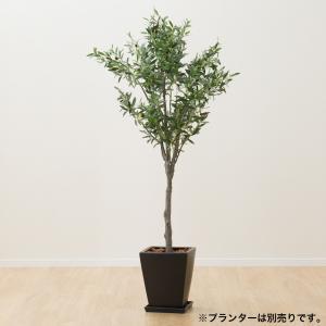 フェイクグリーン(180 オリーブツリーOS1807-6-1788) ニトリ 『玄関先迄納品』 『1年保証』 nitori-net