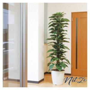 光触媒 人工観葉植物 光の楽園 ジャイアントポトス 1.8m 145A350|nitzeshop