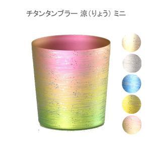 敬老の日 涼 りょう ミニ チタン タンブラー 保温 保冷 おしゃれ 二重 カップ コーヒー 米寿 プレゼント 金婚式 ビアカップ ビールグラス|niwa-company