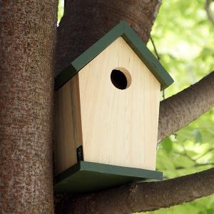 バードハウス −グリーン− (鳥 野鳥 巣箱 鳥小屋 バードウォッチング 庭 ガーデニング 木製 かわいい)