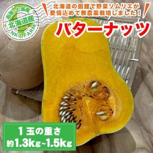 北海道産 バターナッツ 3玉セット(1玉約1.3kg〜1.5kg)/ひょうたんのようなかわいい形のか...