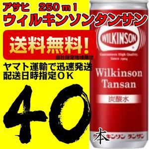 炭酸水・ソーダ アサヒ飲料 ウィルキンソンタンサン 250ml 1箱 20缶入×2ケース 40本 業務用