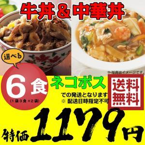 牛丼の具 & 中華丼の具 選べる6食 ...の関連商品2