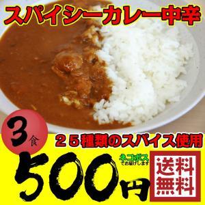 カレー 500円 ポッキリ レトルトカレー 3食 スパイシー...