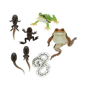 Kitan Club Frog and Toad Collectible Figure Myster...