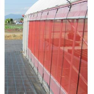 サンサンネット 防虫ネット クロスレッド 0.8mm目×幅150cm×長さ100m nns