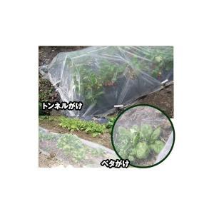 防虫ネット AJメッシュシート 150cm×100m|nns