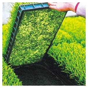 水稲育苗箱の置床にシートとしてご使用なれます。