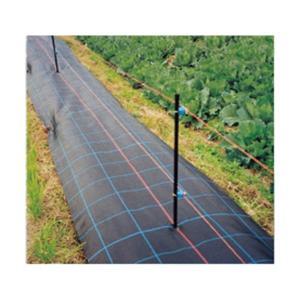 防草シート アグリシート  黒  長さ100m×幅150cm|nns